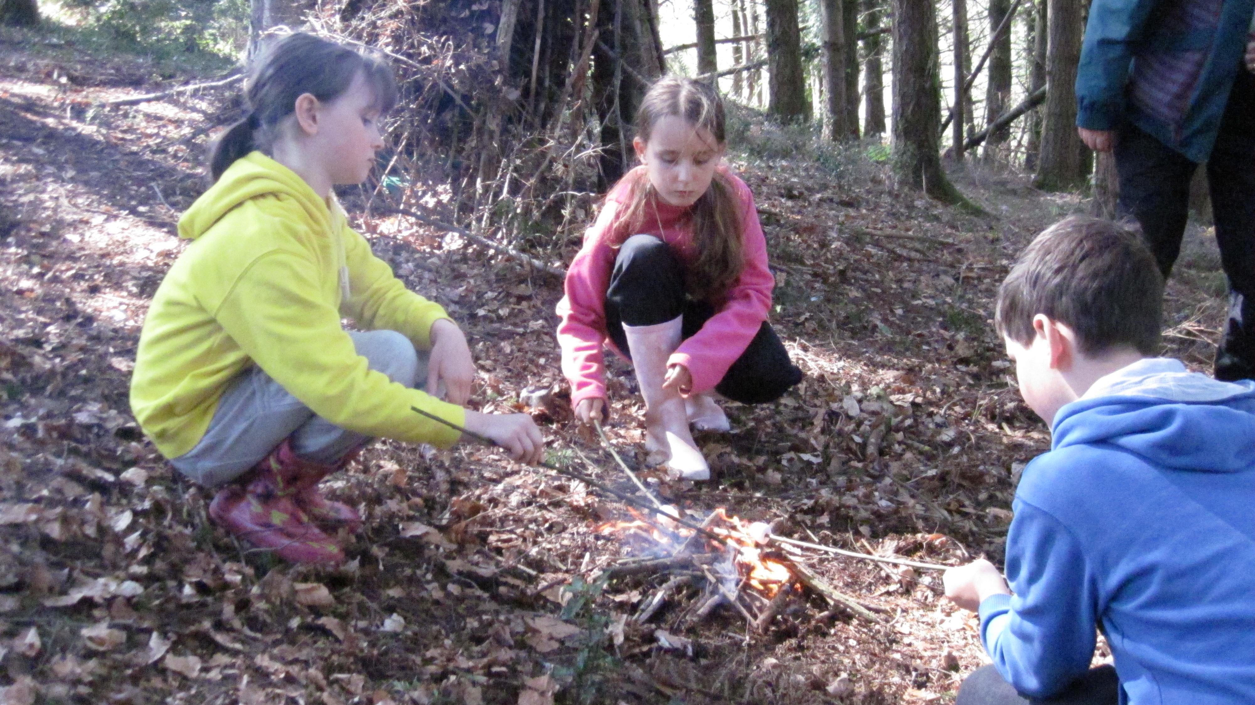 Family Explorer Day at Seaton Marshes (Thu 30 Jul)