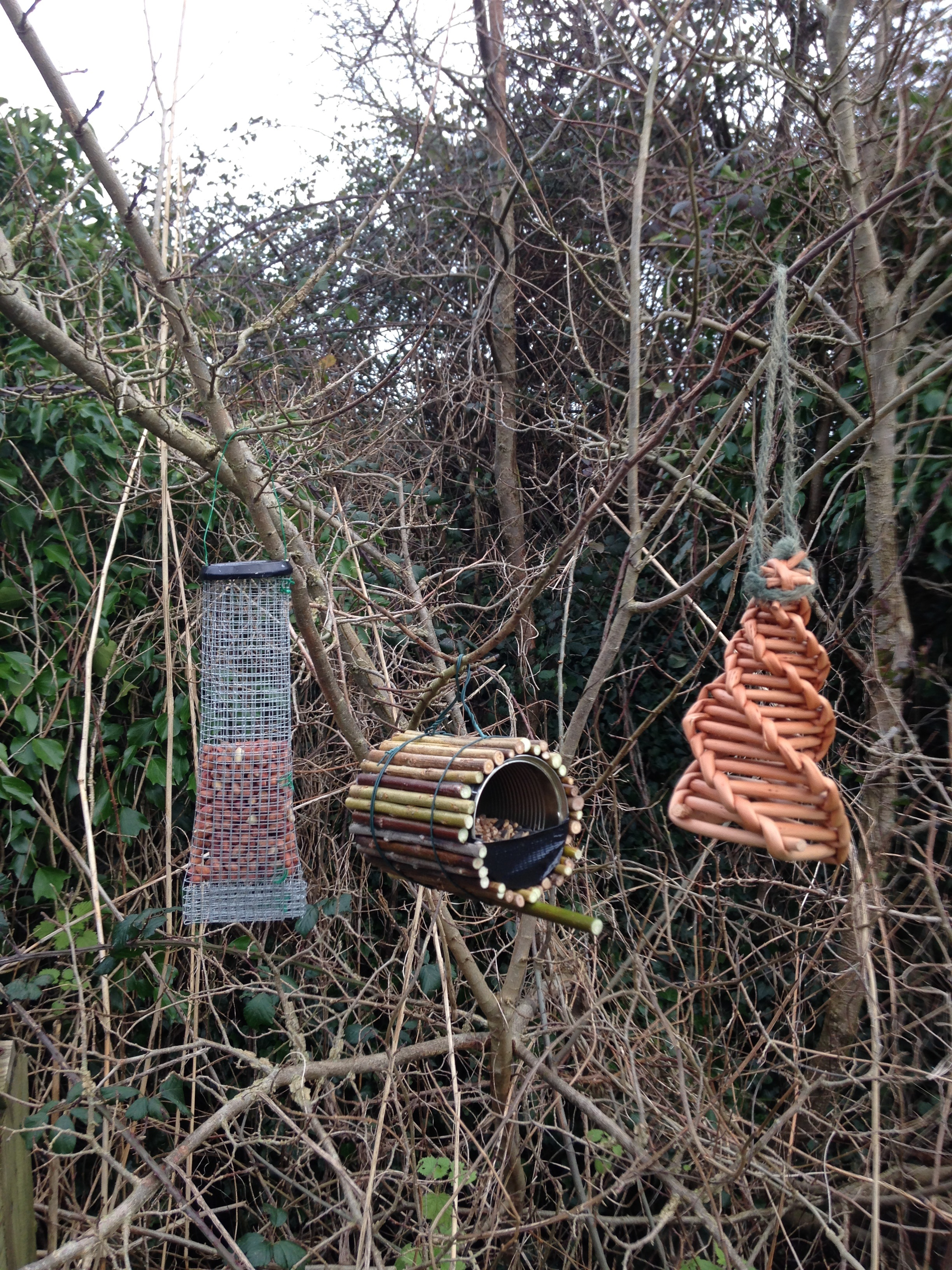 Come and Make Birdfeeders