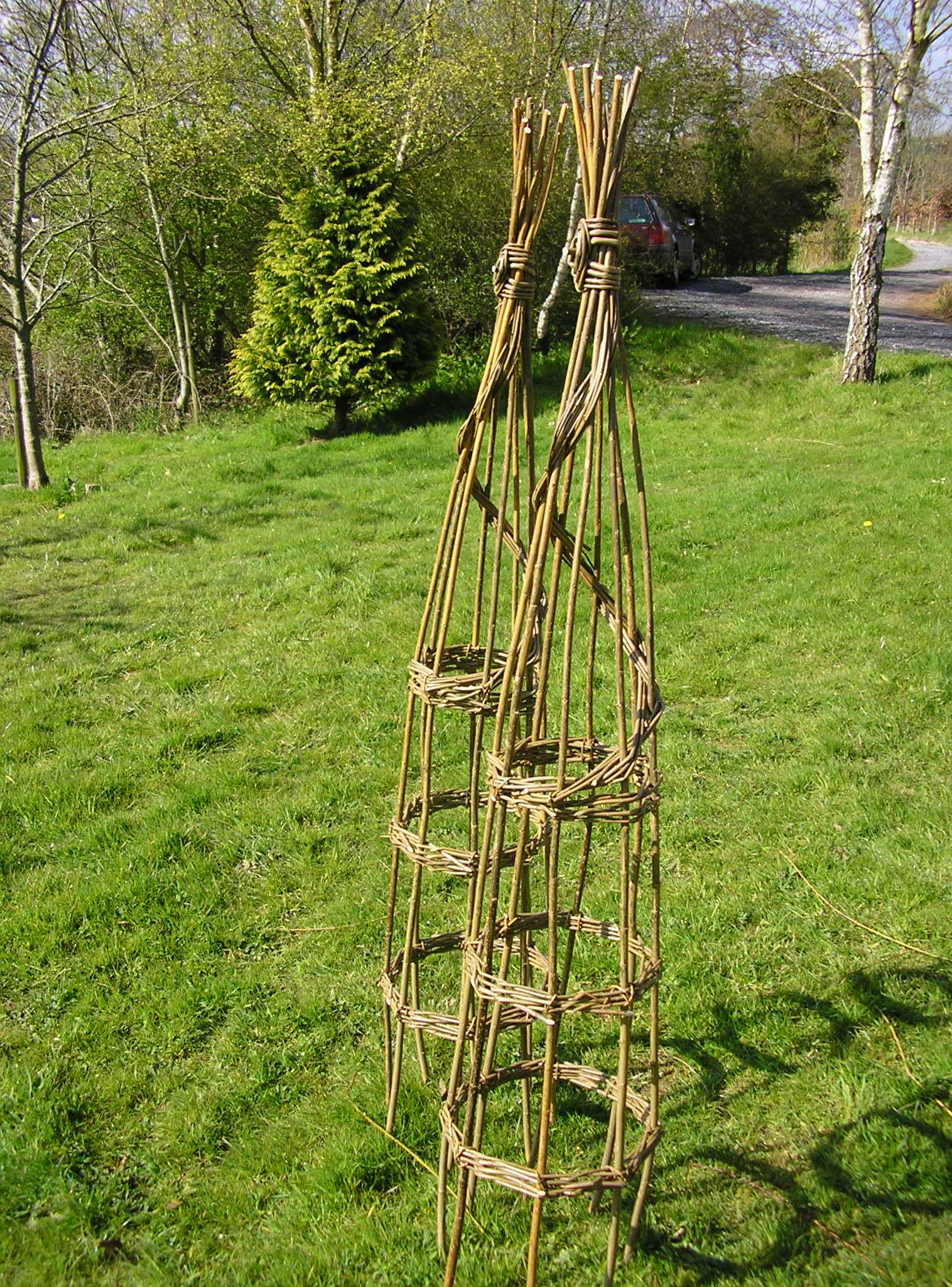 Windrush Willow: Plant Supports (Sun 1 Mar)