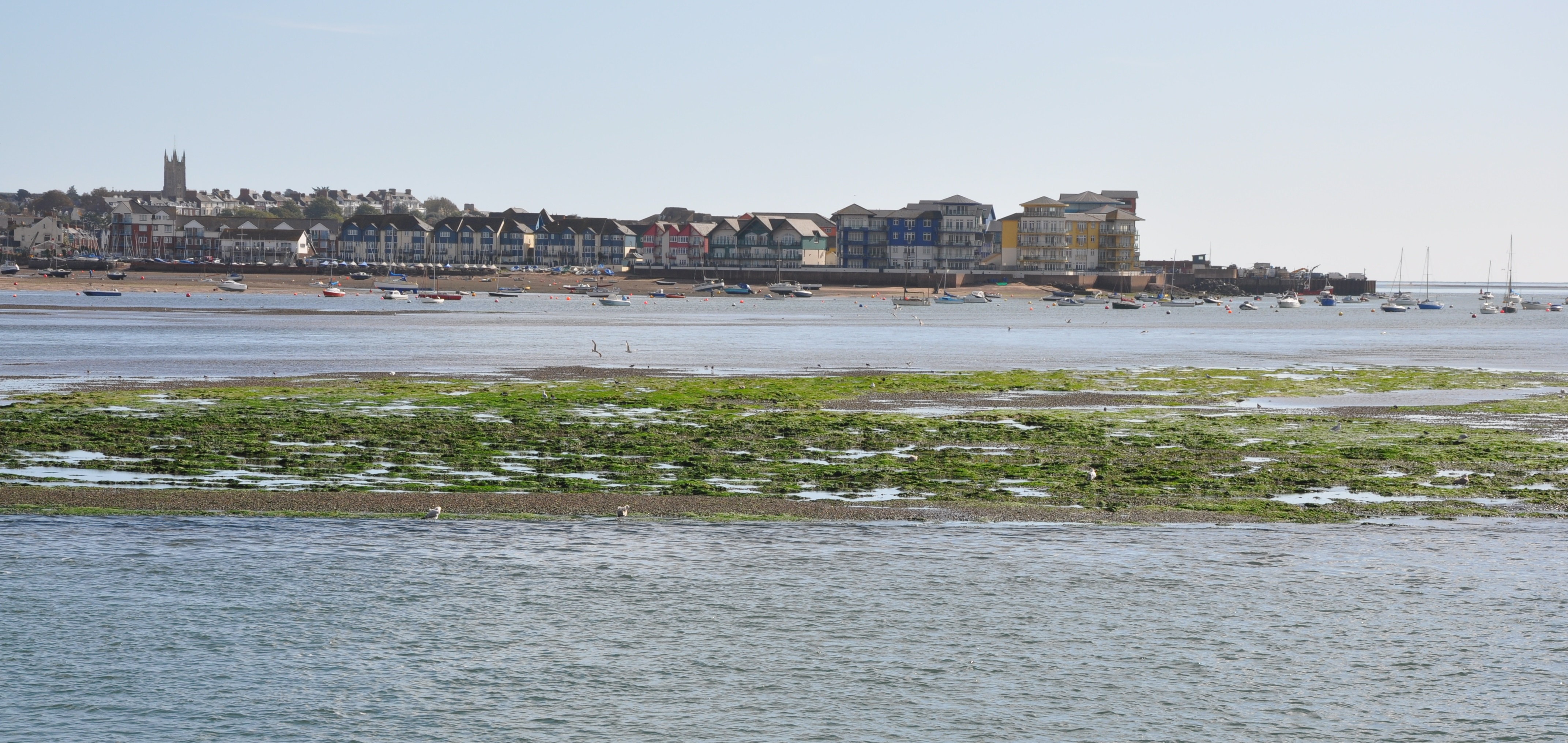 Exmouth from the Exe Estuary