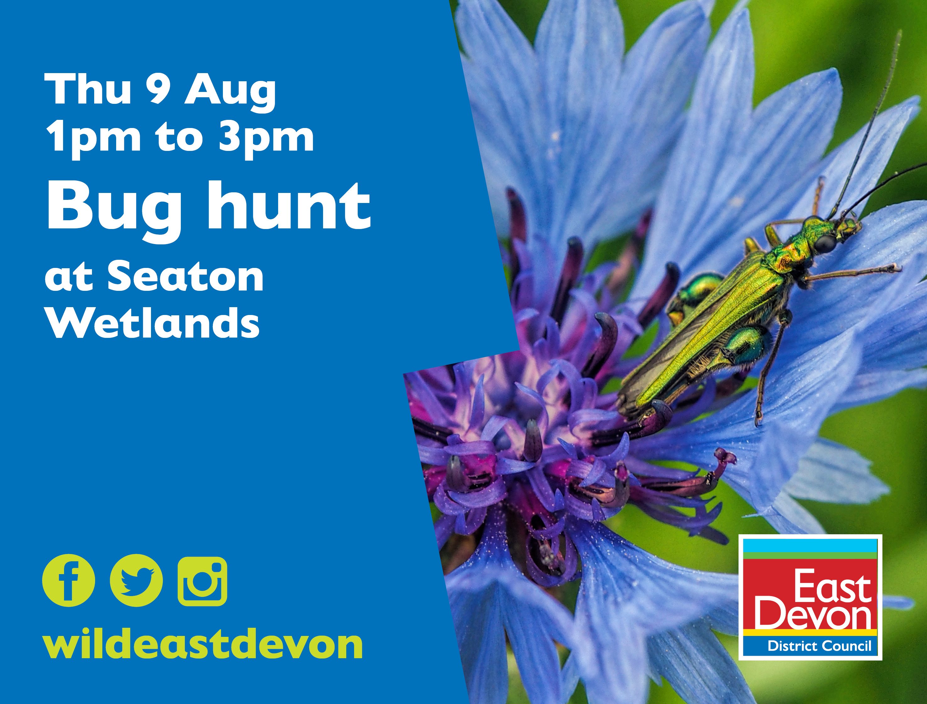 Bug hunt at Seaton Wetlands