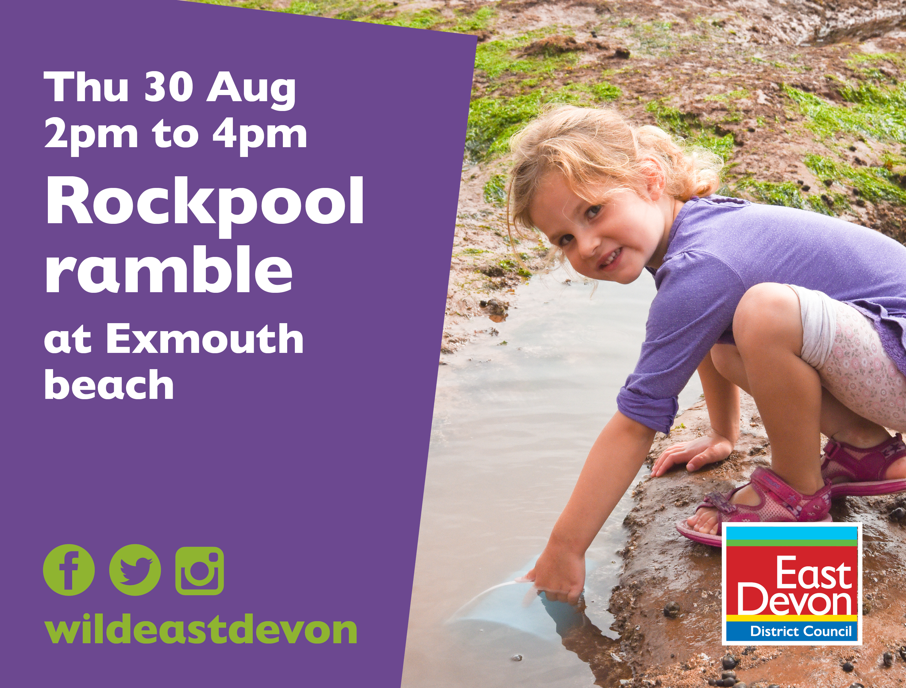 Rockpool Ramble Exmouth