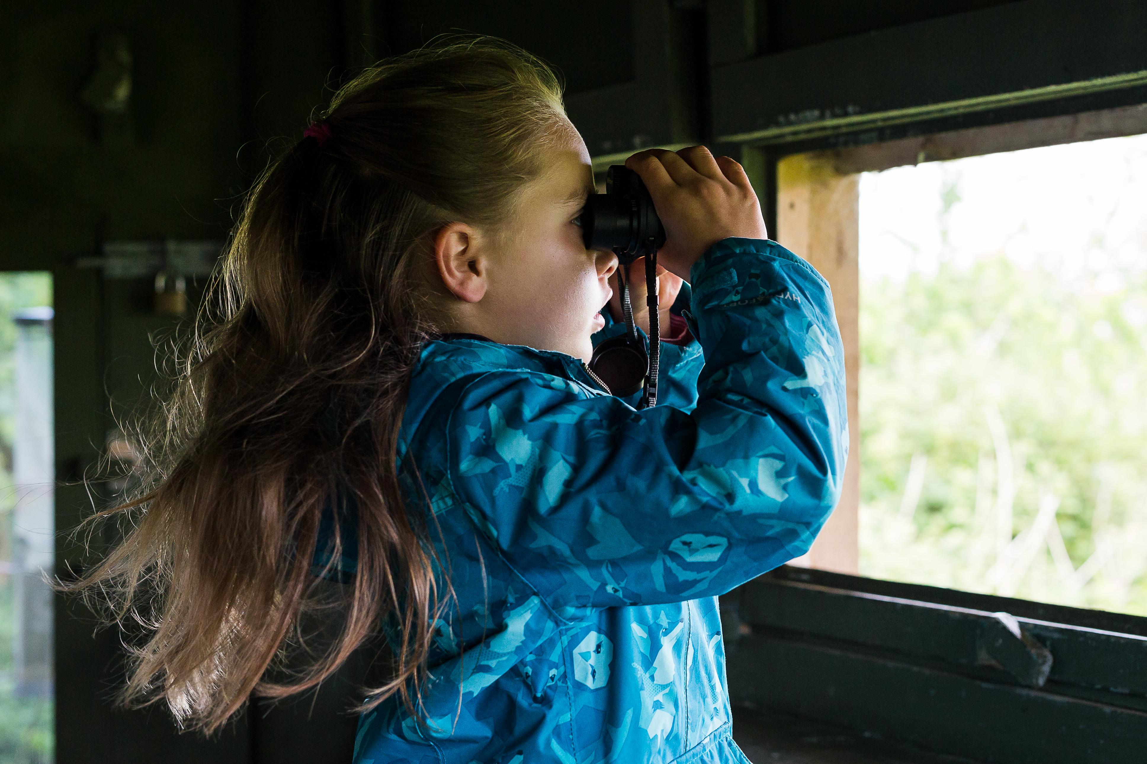 Bird watching for children 20 February (11am to 12noon)