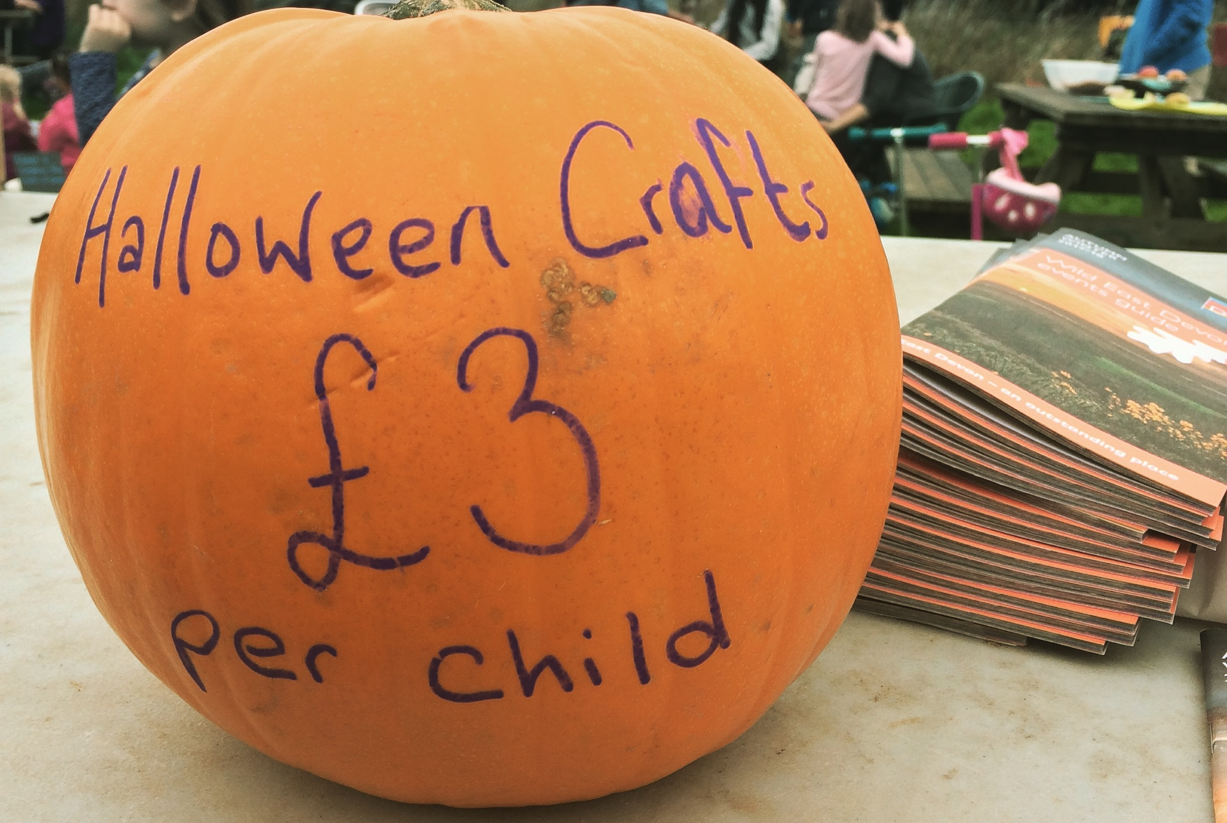 Autumn crafts at Seaton Wetlands