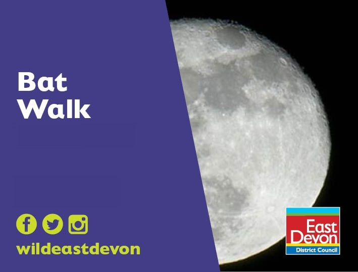 Bat Walk (Thu 10 Sep)